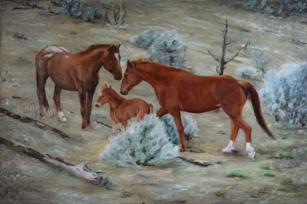 Wild Horses    $1200