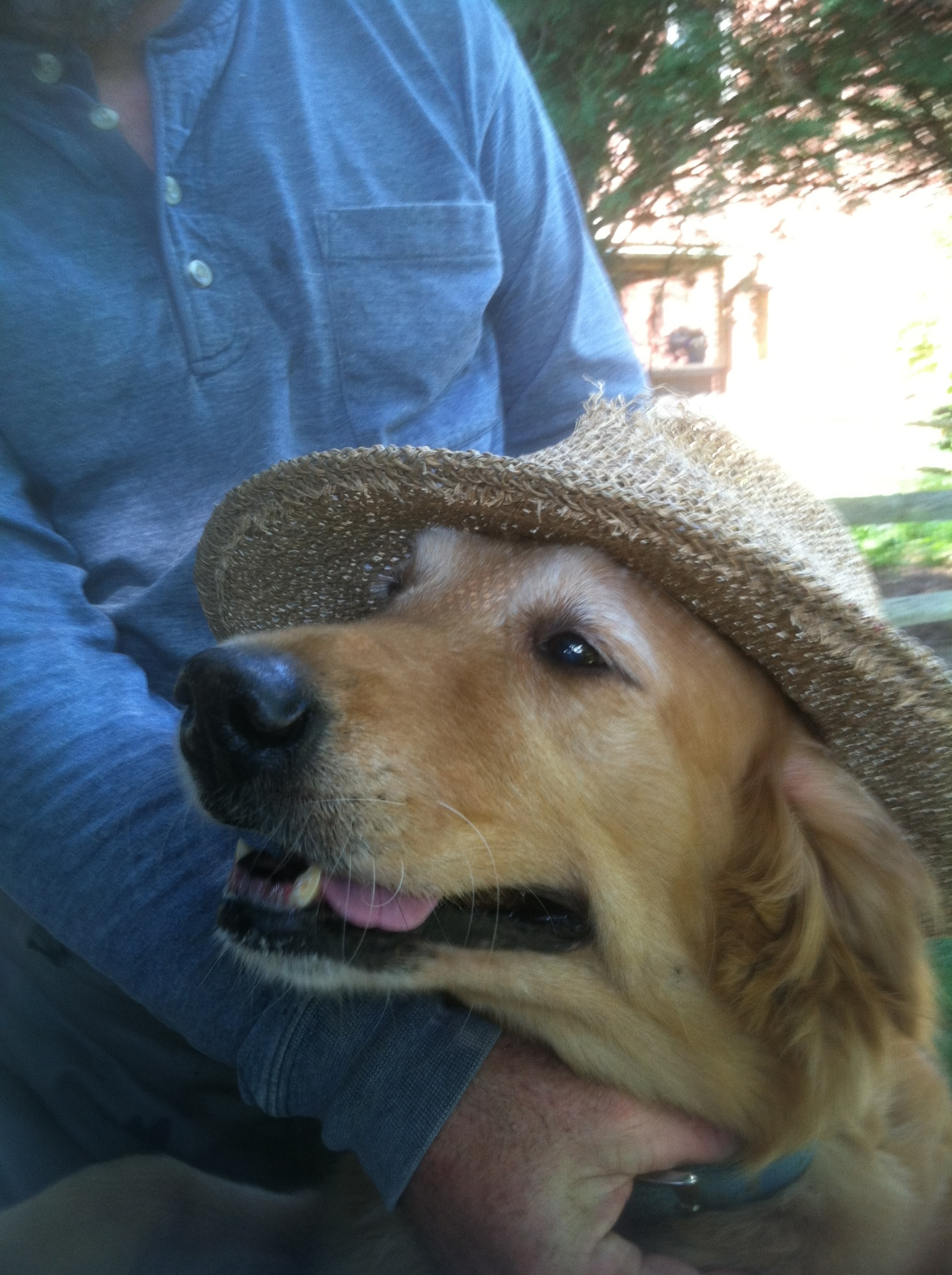 Ember in her straw hat.