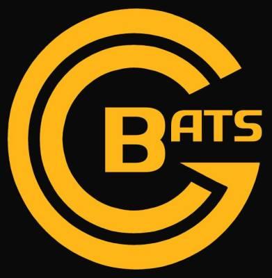 Gotham Bats    (8-6)