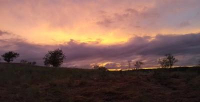 Argyle Sunset