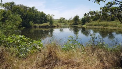 Argyle tank/pond