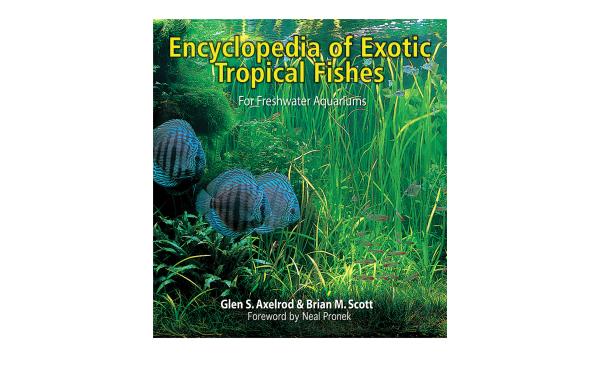 Fish Book Cover Design