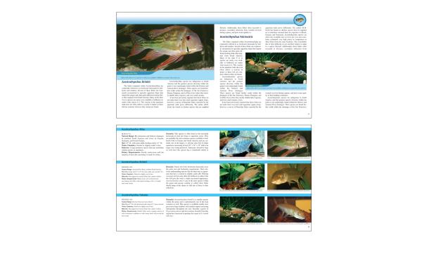 Fish Book Interior