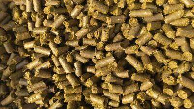 Leucaena leaf pellets