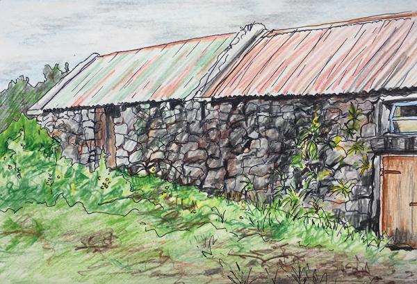 Hilary Morley Artist Galway