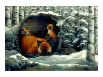 Red Fox Family Wild Eyes and Fireflies Series