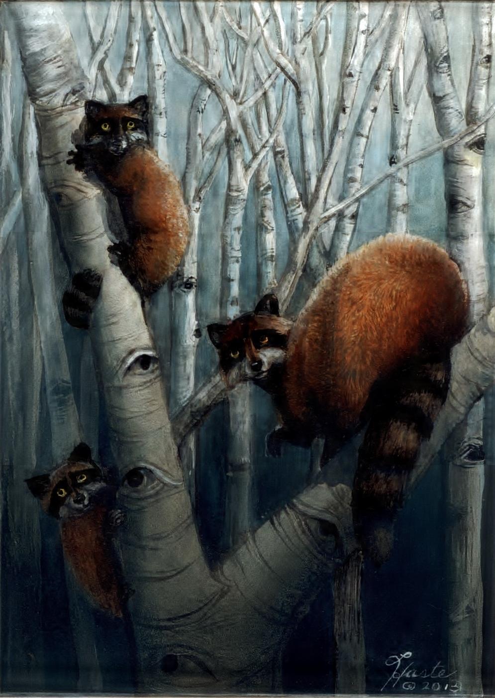 Raccoon Family Wild Eyes and Fireflies Series