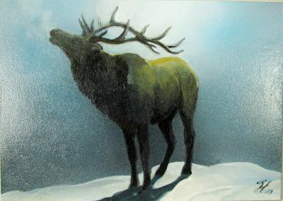 Elk in the Moonlight Wild Eyes and Fireflies Series