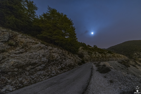 Jihad Asmar Photography moon rise road shouf reserve