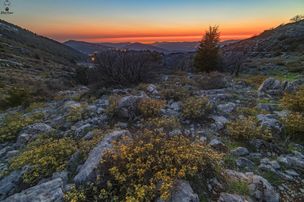 Jihad Asmar Photography colorful sunset shouf reserve
