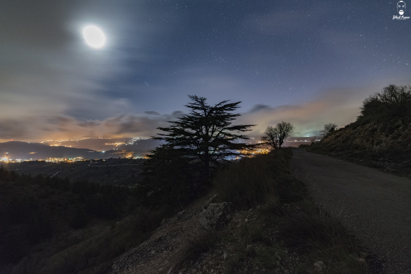Jihad Asmar Photography cedars lebanon shouf reserve