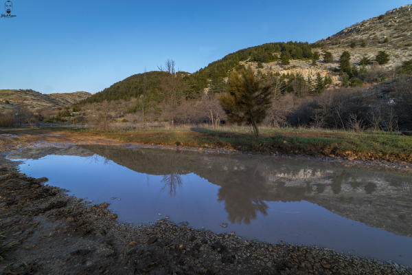Jihad Asmar Photography reflection shouf biosphere reserve