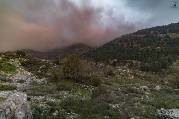 Jihad Asmar Photography volcanic sunset shouf reserve