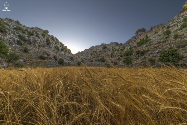 Lebanese Landscape Photographer, Lebanese Photographer, sunrise, Jaj Lebanon