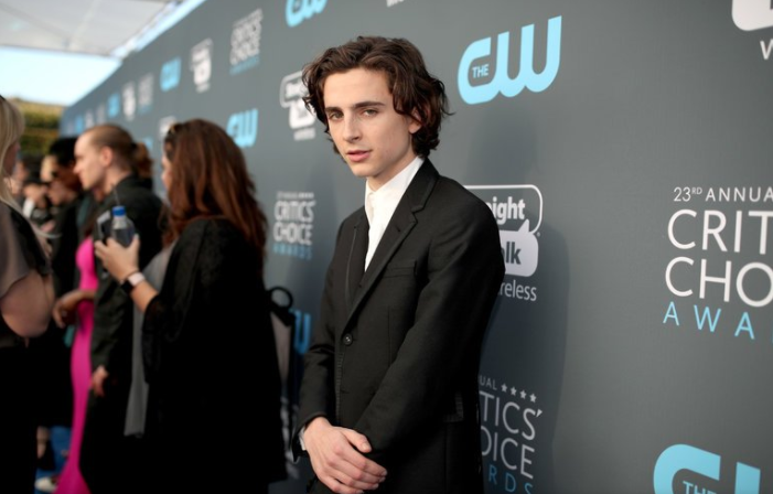 Timothée Chalamet Promises Salary From Woody Allen Film to Charity