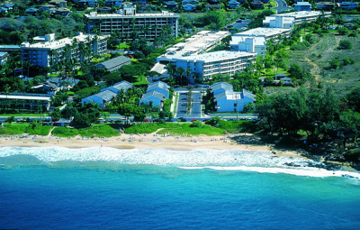 Maui Banyan ~ Kihei