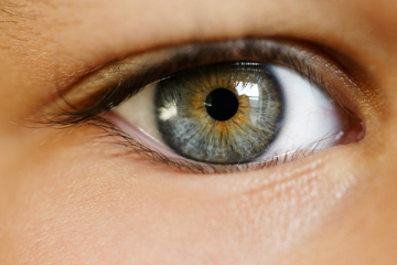 Article for Stem Cells for Blindness