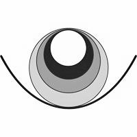 Foundation for Shamanic Studies: Member