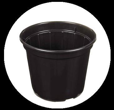 O Vaso para Plantio