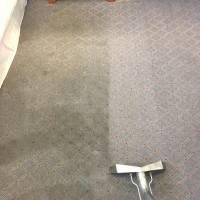 San Diego best carpet stain cleaner