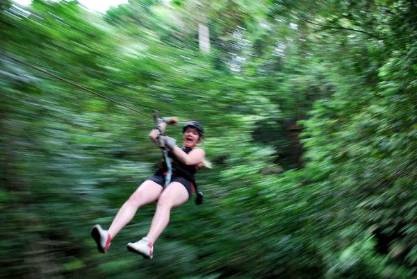 Portobelo - Canopy Tour