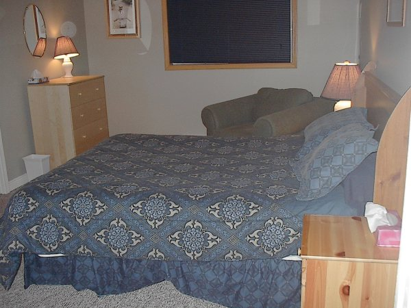 Chambre principale en bas / Lower level master Bedroom