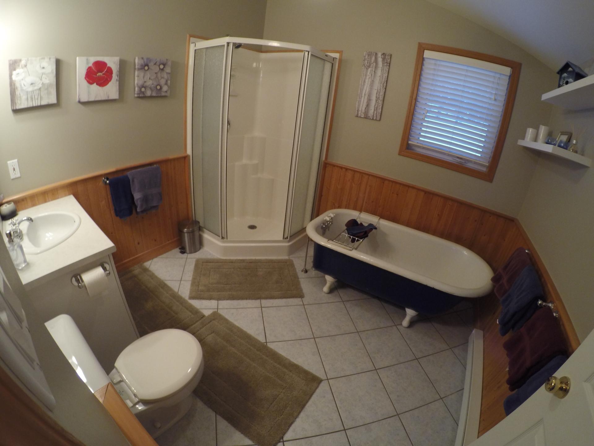Salle de bain principale / Main Floor Bathroom