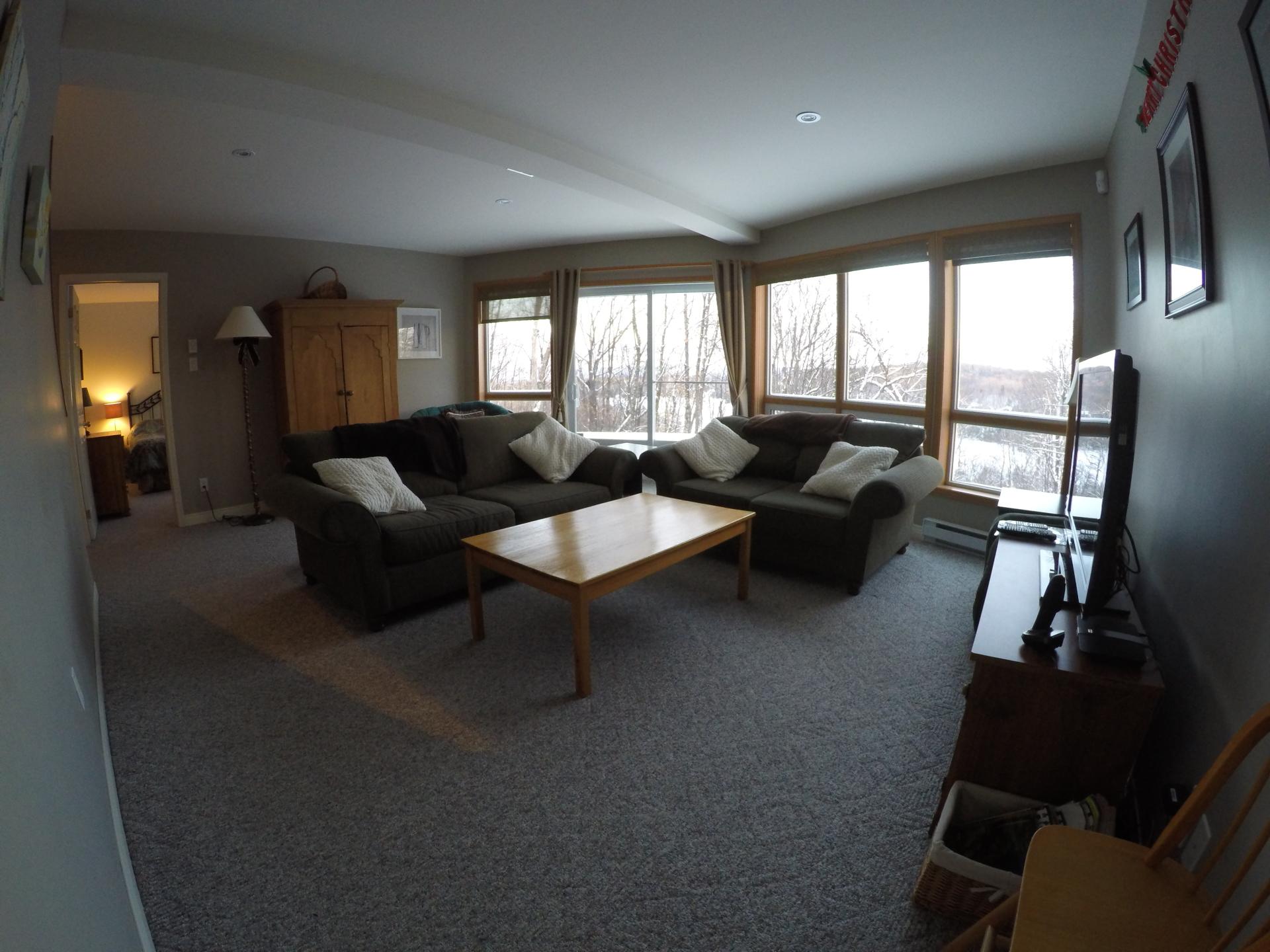 Salon en bas / downstairs livingroom with TV