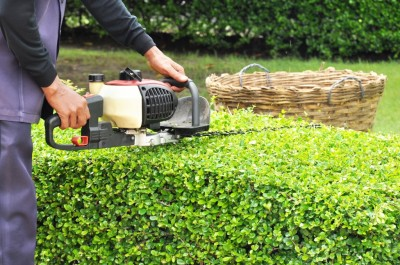 Commercial or residential, our lawn care professionals know how properly trim all your trees and shrubs to perfection.