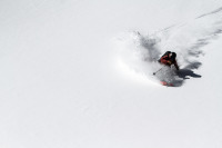 freeride skier, spraying powder snow off piste
