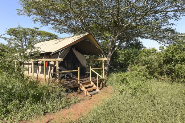 Our Safari Tents