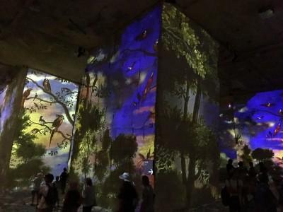 Les Carrières de Lumières光影視覺藝術體驗