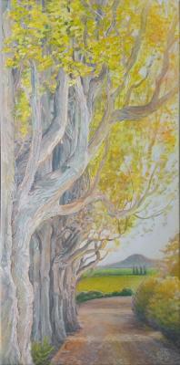 Past the Poplars