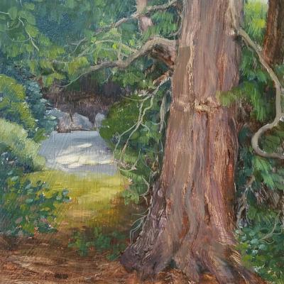 Pickett's Tree