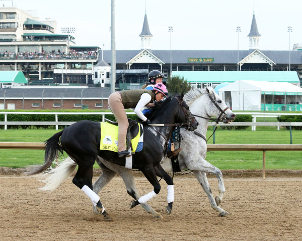 Well-traveled Gray Magician Makes Return in Grade 3 Indiana Derby at Indiana Grand Racing & Casino