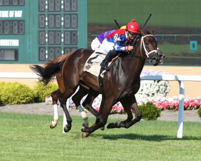Wondrshegotthundr Rolls to Win in Florence Henderson Stakes