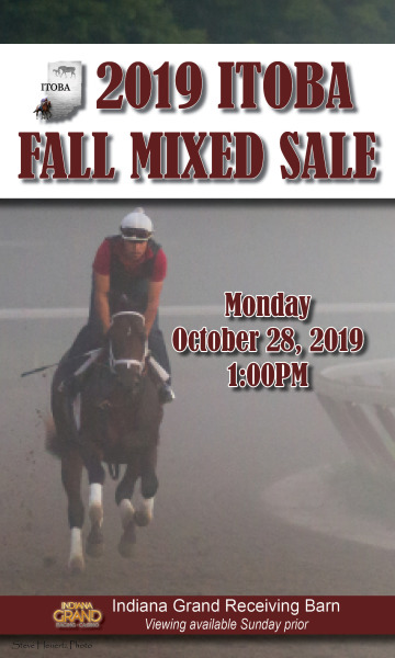 Catalogs now available for 2019 ITOBA Fall Mixed Sale  at Indiana Grand Racing & Casino