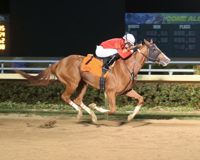Fireball Baby Ignites Speed in ITOBA Stallion Season Fillies Stakes at Indiana Grand