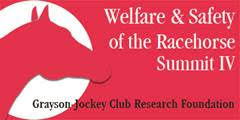 Welfare and Safety of the Racehorse Summit IX Scheduled for June 23, 2020