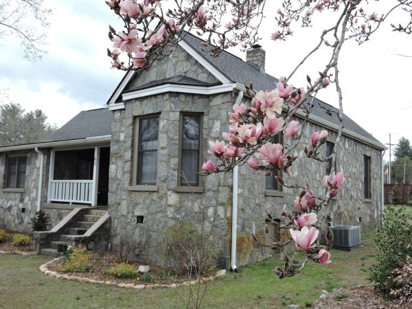The Old Stone Cottage through the Tulip Magnolia