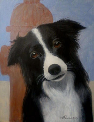Your Dog Portrait