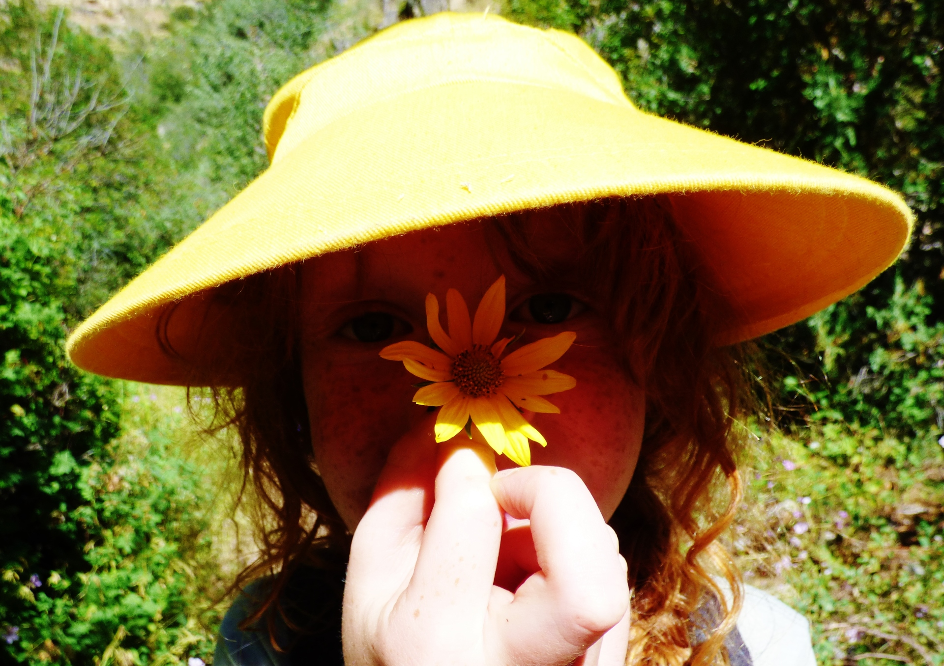 Giving Yourself Some Compassion and Wildflowers