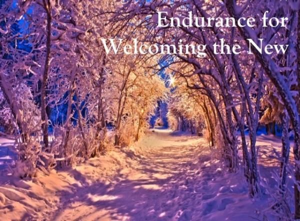 Winter Endurance