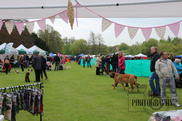 Jerry Green Dog Show