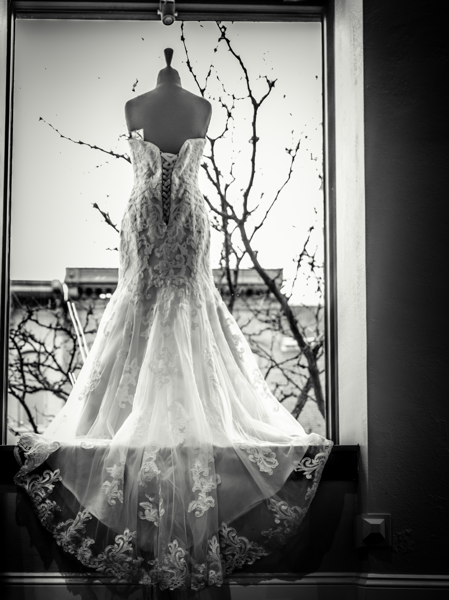 Wedding Photographer, Kalamazoo Michigan, Best photographer, best wedding photographer, wedding photographer in Kalamazoo Michigan, Detroit, Chicago Wedding Photographer,