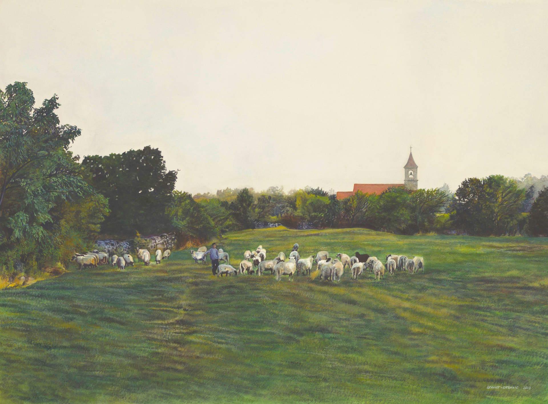The Sheep Herder, Croatia