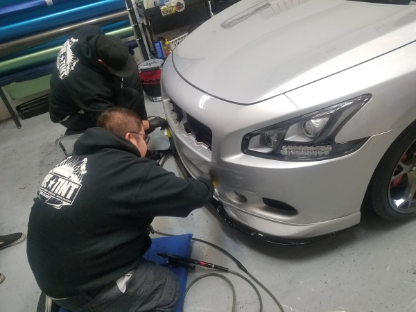Paint protection, Xpel, Suntek, Rock chips