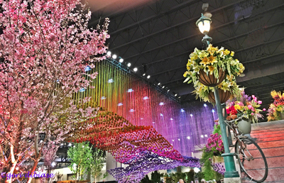 Imagining Holland,  Phila. Flower Show