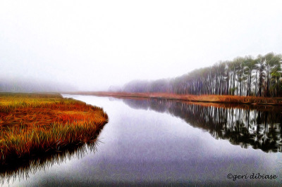 Fog at Love Creek