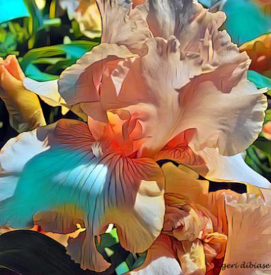 Iris of the Tropics